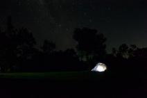 Ollie's first night under the stars!