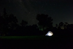 Ollie's first night under the stars!